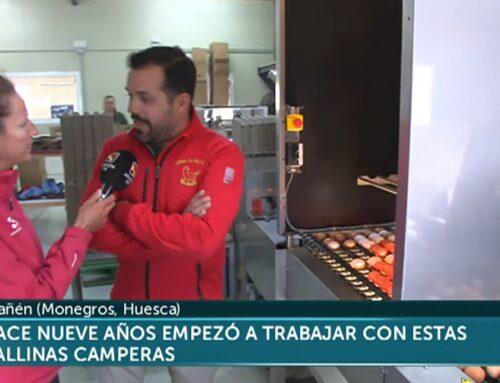 Nuestro reportaje en Aragón Televisión, hace un año..